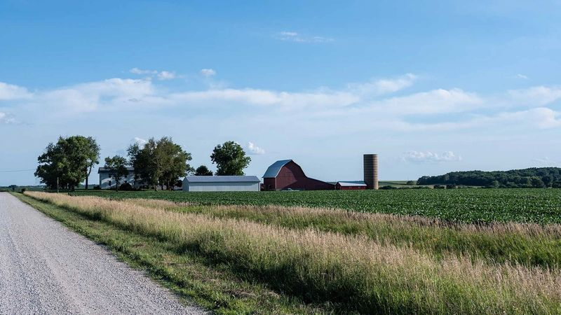 Traditional farmstead in midwestern USA along a rural road with soybean fields