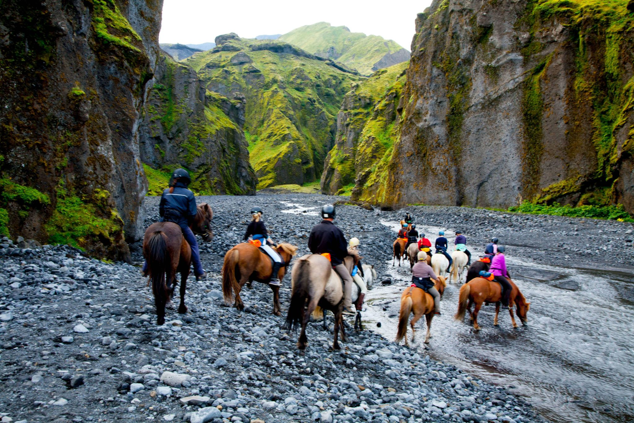 Guests exploring Iceland on horseback