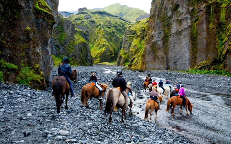 BEST HORSE RIDING TOUR IN ICELAND
