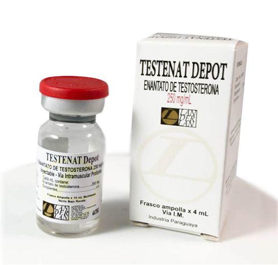Testosterona Enantato 250mg/ml / 4 ML