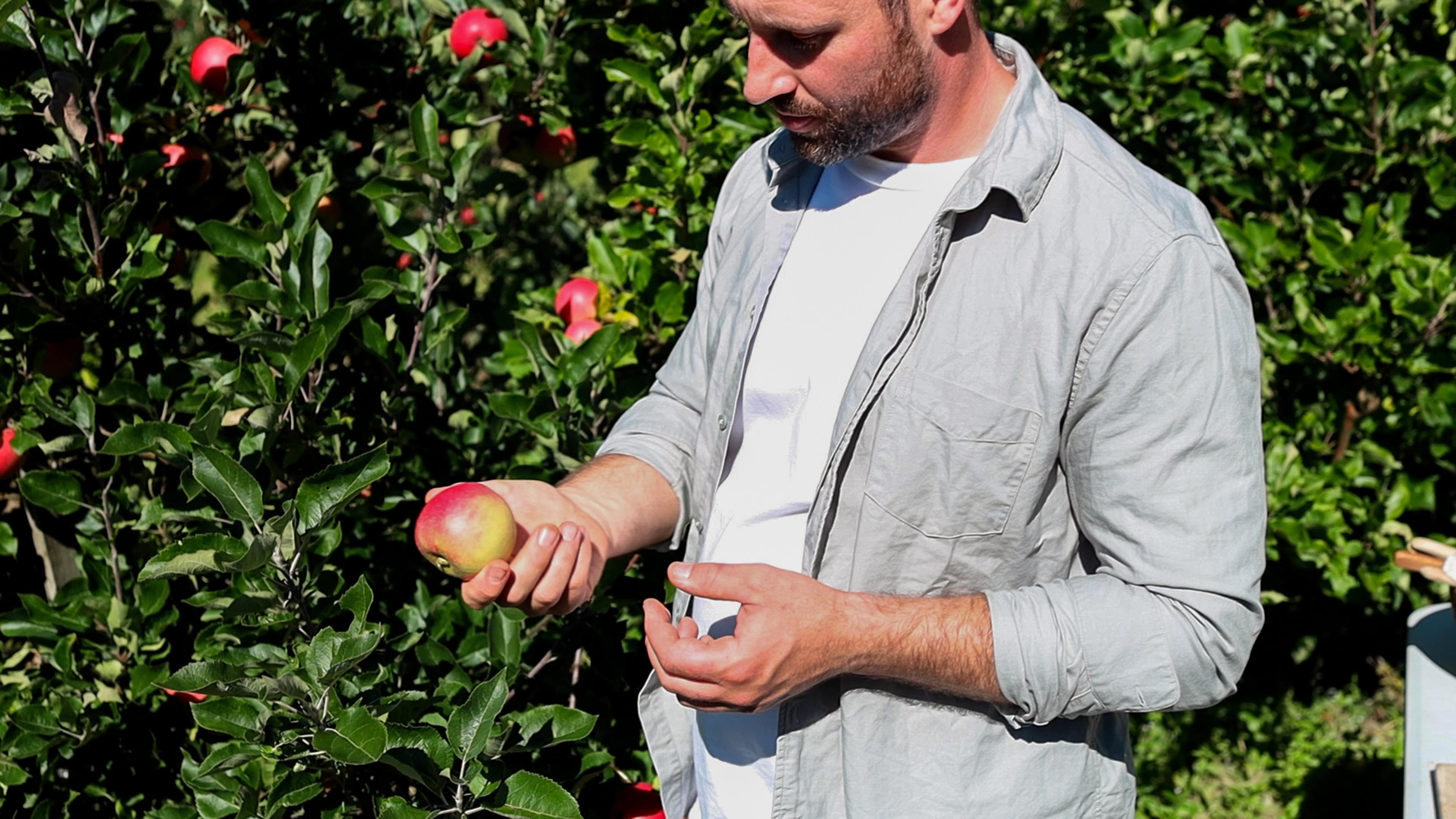 Eple og gresskar - månedens smak i oktober