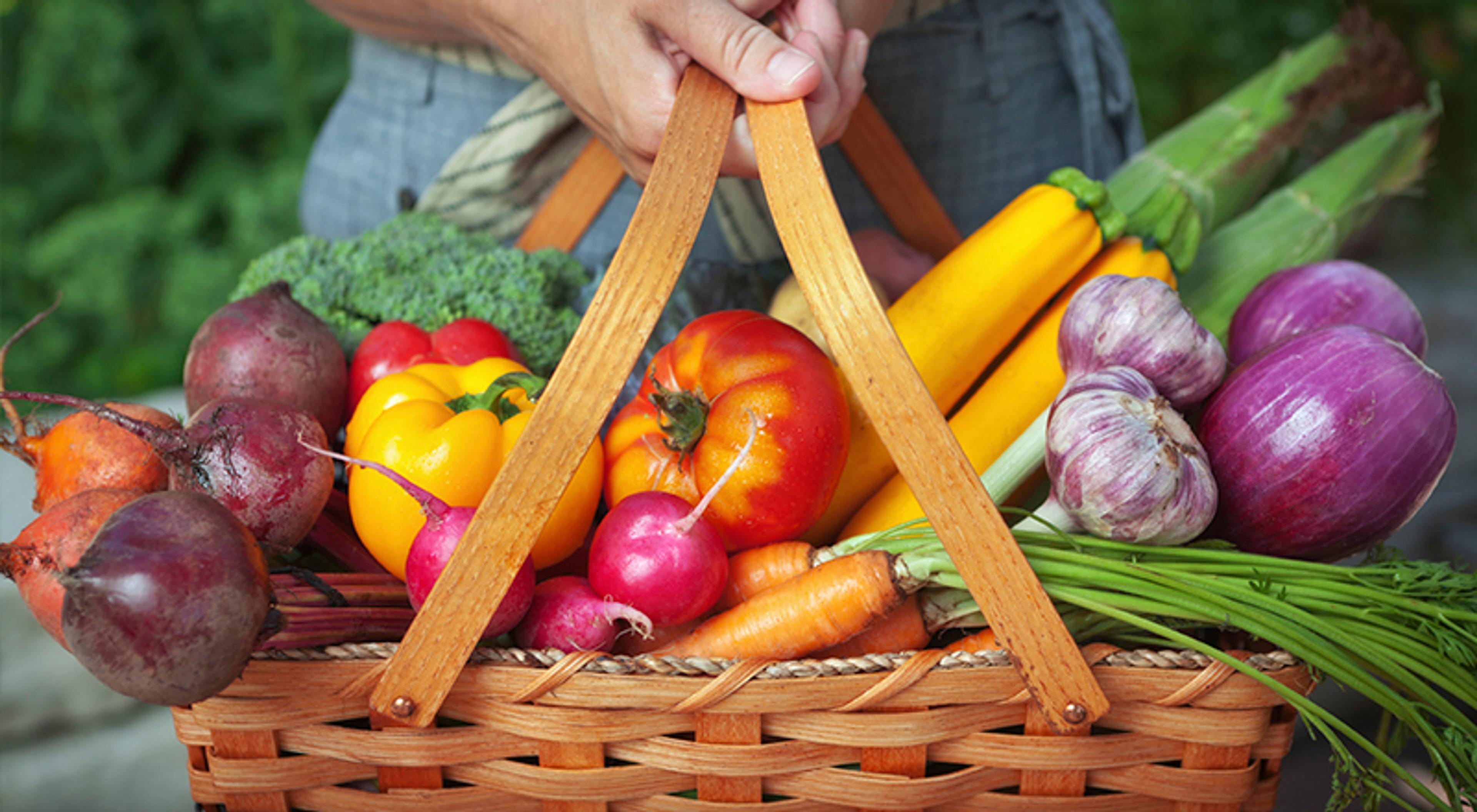 Slik kan du dyrke din egen grønnsakshage