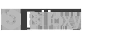 bilaxy partner image