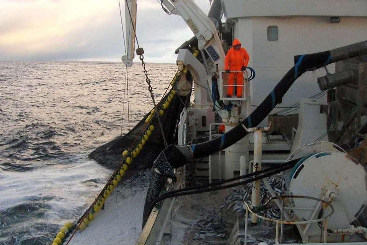«Hargun» på sildefiske i Lofoten i oktober 2009. (Ill.foto: tips@midtsiden.no)