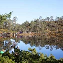 Over 300 deltok i turmarsjen. (Foto: Nils Petter Eidem)