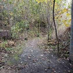 Men stien er ikkje god å gå eller sykla på. (Foto: KVB)