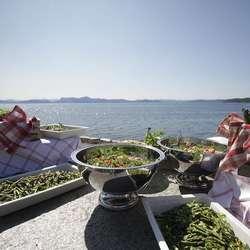 Gjestane fekk full servering. (Foto: Kjetil Vasby Bruarøy)