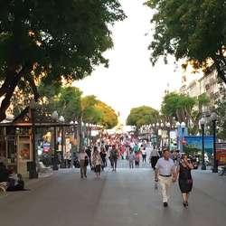 Nova Rambla liknas berømte La Rambla i nabobyen. (Foto: Os Travel)