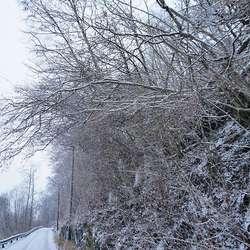 Vegen kan bli stengt i kortare periodar tysdag-torsdag denne veka. (Arkivfoto: KOG)