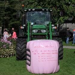 Bondelaget stilte med rosa rundball (foto: AH)