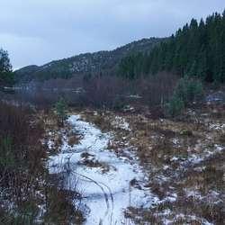 Her går stien vidare til Moberg.