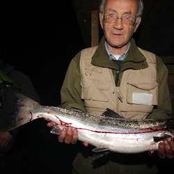 Veim med årets første laks, tatt tre minutt etter at fisket starta. Jarle Rønhovde t.v..  (Foto: KVB)