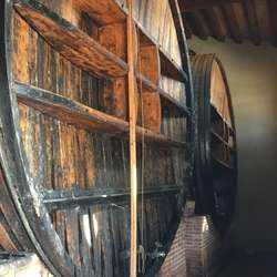 Der blir det utfluktar til vin- og olivengardar. (Foto: Os Travel)