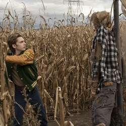 – Kameraføringa til Øvredal er presis og elegant, men òg leiken, synest del Toro. (Foto: CBS Films, Roman Osin)
