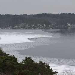 Isen har vore minst 10 cm tjukk i Skeisosen. (Foto: KVB)