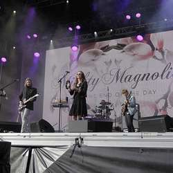 Mighty Magnolias. (Arkivfoto: KVB)