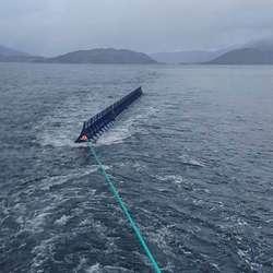 – Vi heldt han 20 meter bak båten og gjekk med 3-4 knop, fortel Garvik. (Foto: MS Brutus)