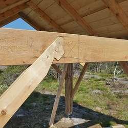 Bua vart først bygd av Harald Døsen til Handverksdagen ifjor. (Foto: KOG)