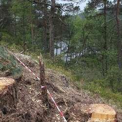 Frå B5 er det utsikt ned mot Gåsakilen. (Foto: KVB)
