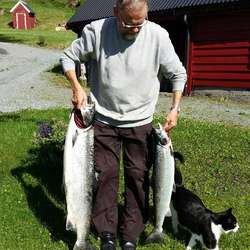 Katten var nøgd (og innbilsk) då Eivind kom heim. (Privat foto)