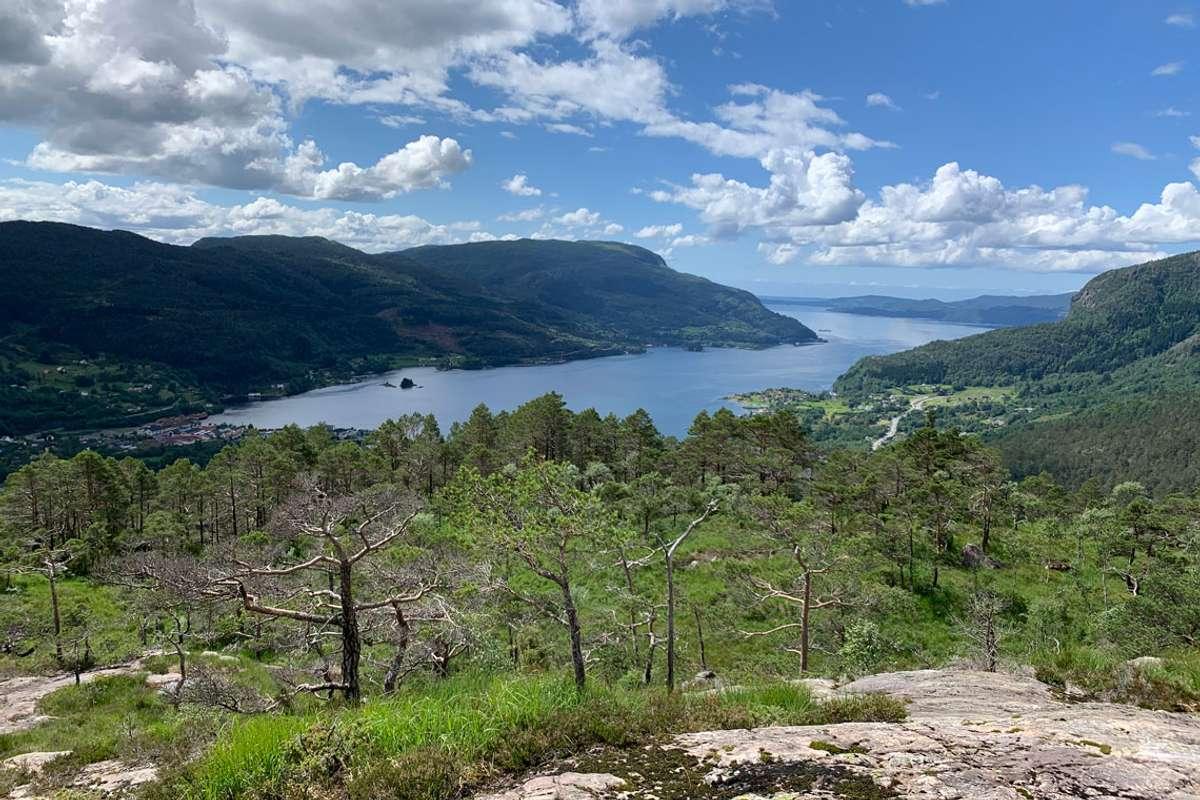 Framtidig utsikt frå dagsturhytta på Vetlevardhaugen mot Eikelandsfjorden. (Foto: Bjørnafjorden kommune)