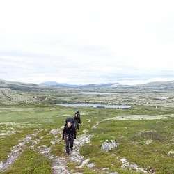 Seterområde i Alvdal Vestfjell