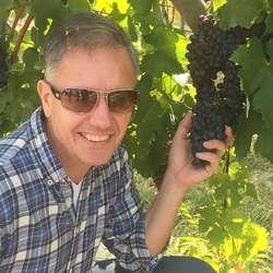 Bjørkhaug og medeigarane vil dyrka sin eigen vin.