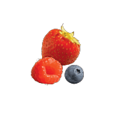 A sweet and crisp aroma of berries