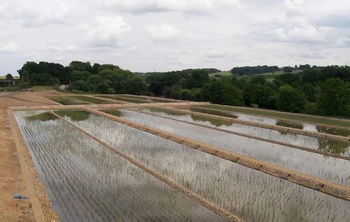 Berkhamsted Wastewater Treatment Works - Case Study Photo