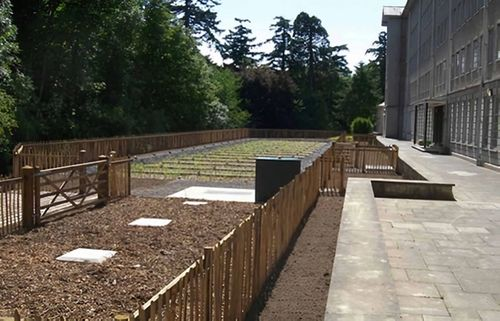 Conway Centre Reed Bed Treatment System - Case Study Photo