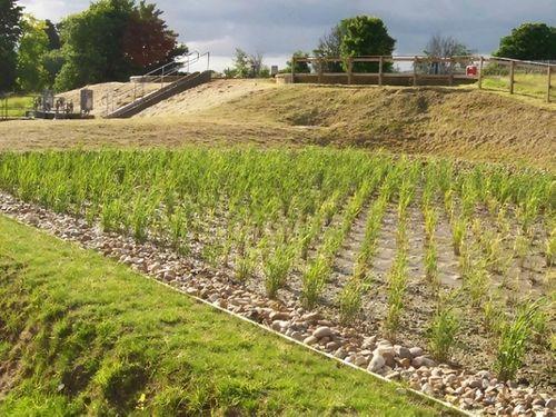Weston Wastewater Treatment Works - Case Study Photo
