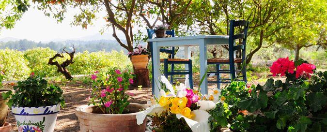 La Paloma outdoor seating