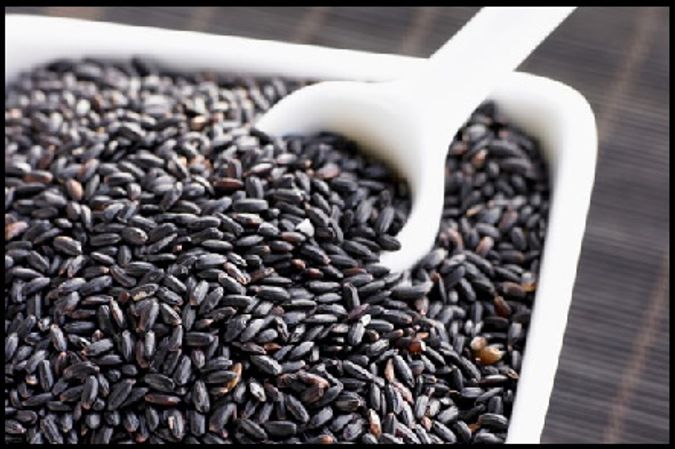 Forbidden Rice aka Black Rice