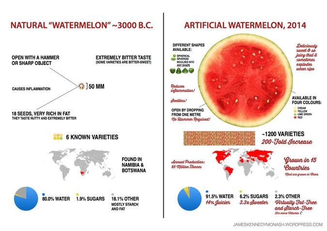 artificial-natural-watermelon