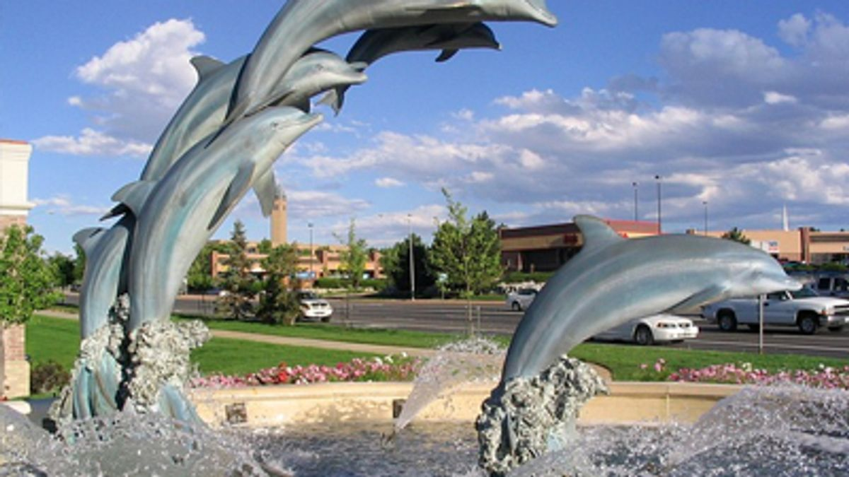Denver Dolphins