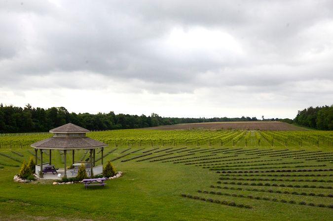 Bonnieheath Farm & Winery
