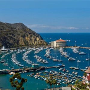 Welcome to Catalina Island