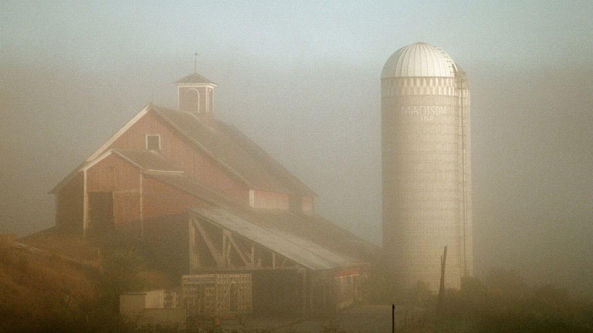 Early morning fog on the farm
