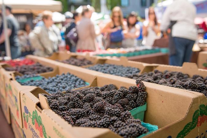 Oregon Marionberries