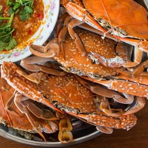 baked sea crab and seafood sauce