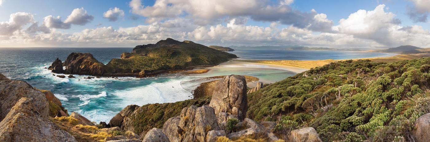 Wild and windswept New Zealand landscape