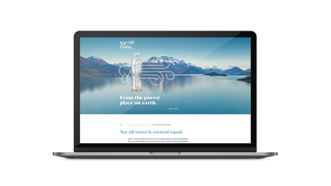 NZ Pristine Website Laptop