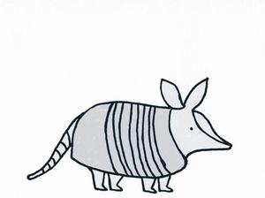 Illustration of an armadillo by Alice Walters
