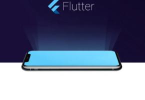 Flutter Project Structure