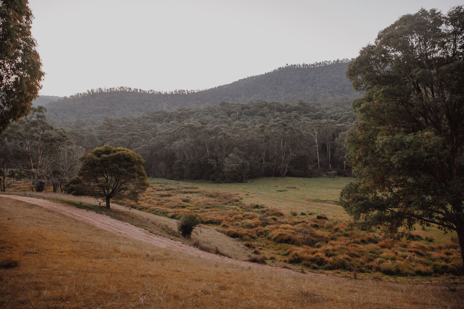 Landscape photo of Nariel Valley property with rolling hills and forest in background