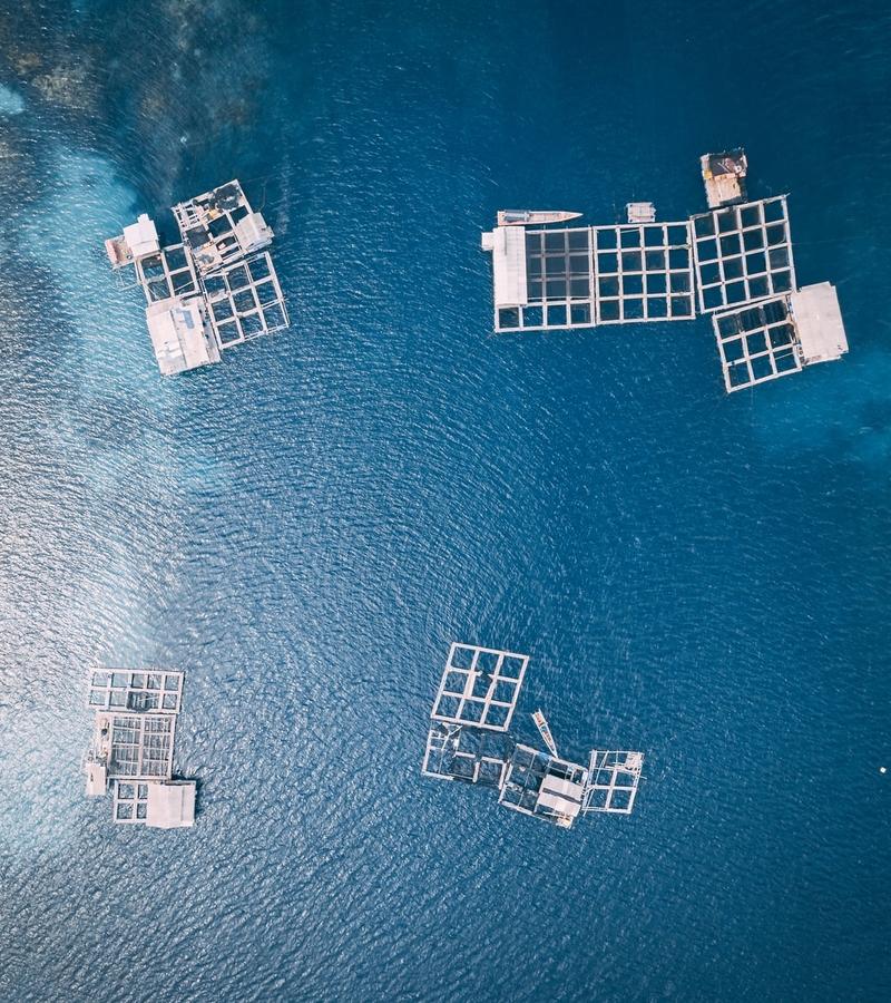Aquaculture & Fisheries