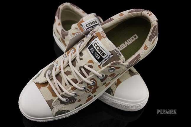 Converse Skate Shoe 1