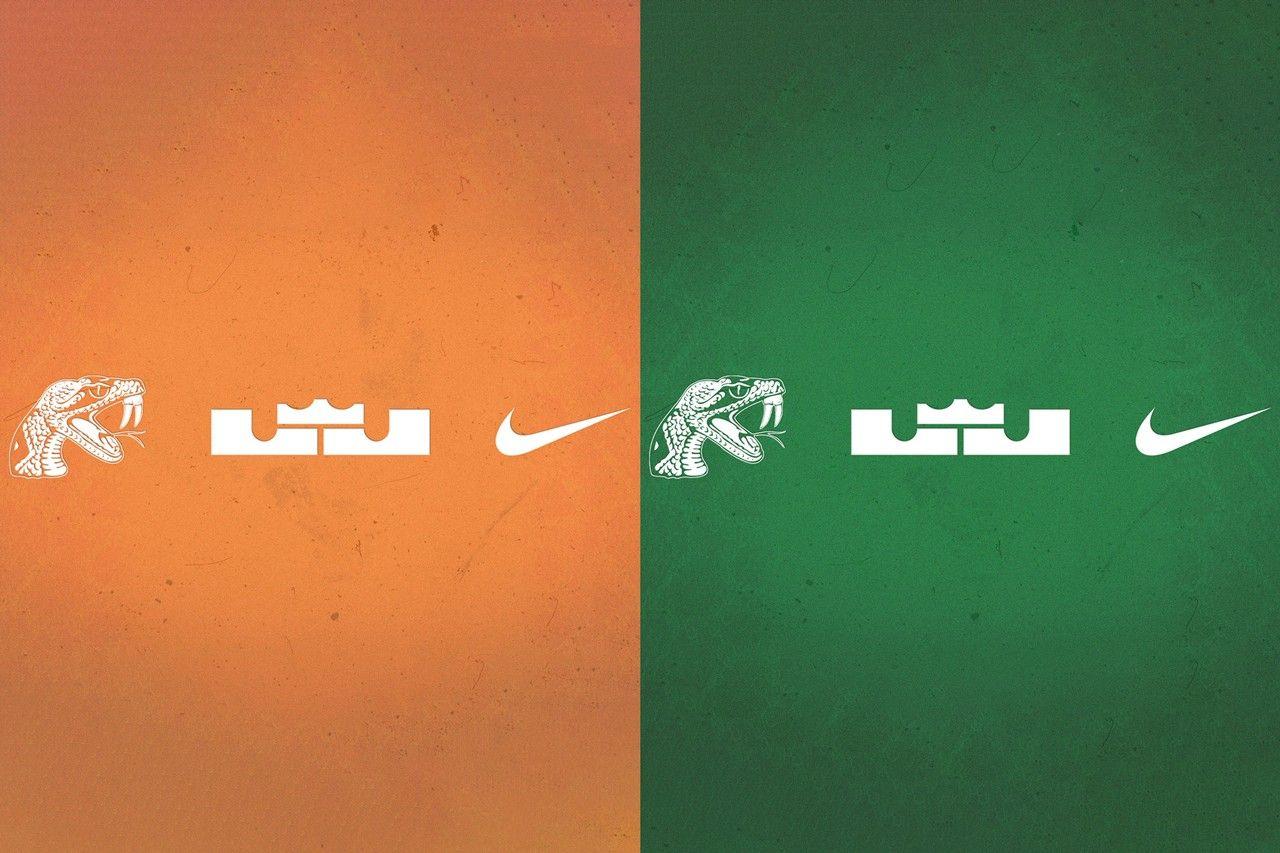 Nike LeBron 18 PE