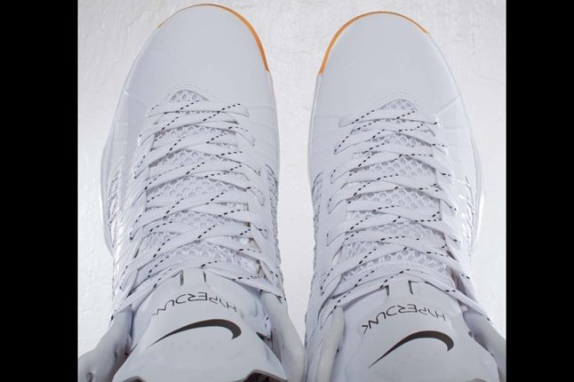 Undftd X Nike Hyperdunk Birds Eye 1