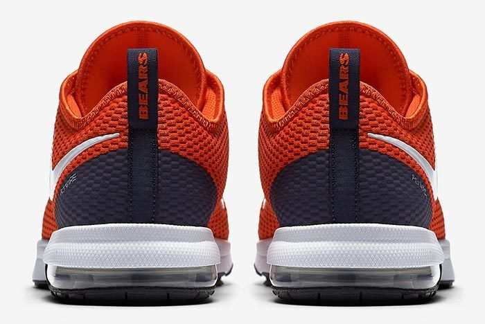 Nike Air Max Typha Bears 1